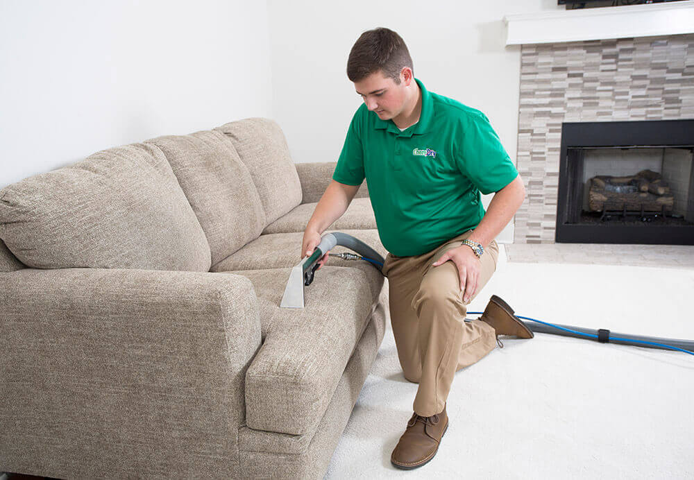 upholstery cleaner cleaning couch